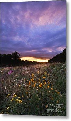 Hoosier Sunset - D007743 Metal Print by Daniel Dempster
