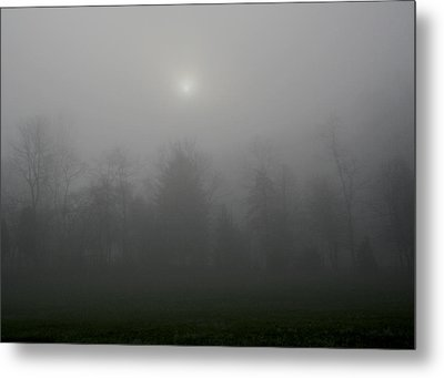 I Awoke In A Dream Metal Print