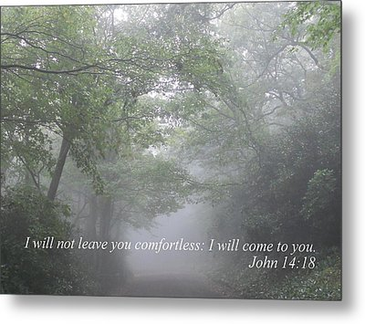 Metal Print featuring the photograph I Will Not Leave You Comfortless by Diannah Lynch
