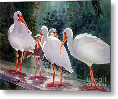 Metal Print featuring the painting Ibis - Youngster Among Us. by Roxanne Tobaison