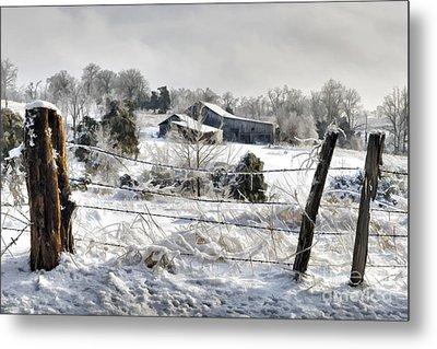 Ice Storm - D004825a Metal Print by Daniel Dempster