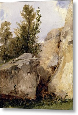 In The Forest Of Fontainebleau Metal Print