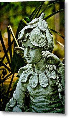 In The Garden Metal Print by Christopher Holmes