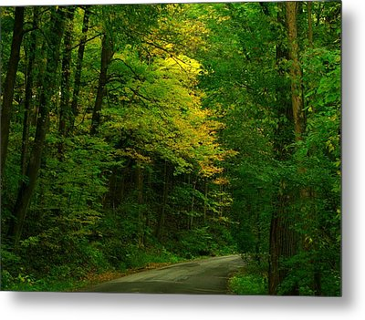 Indiana Road Metal Print by Joyce Kimble Smith