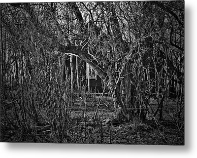 Into The Wilderness Metal Print by Jerry Cordeiro