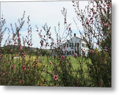 Johnston House In Half Moon Bay Metal Print by Susan Alvaro