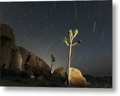 Joshua Tree Star Trails Metal Print by Dung Ma