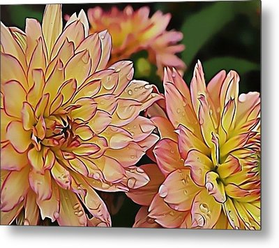 Just Dew Metal Print by Dorothy Hilde