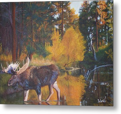Just Passing Through Metal Print by Bill Werle