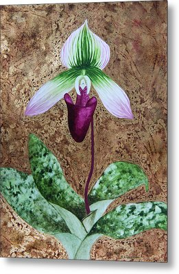Lady Slipper Orchid With Gold Leaf Background Metal Print by Kerri Ligatich