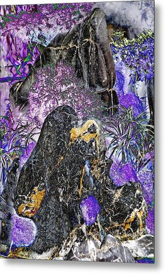Land Of The Lost Metal Print by Devalyn Marshall