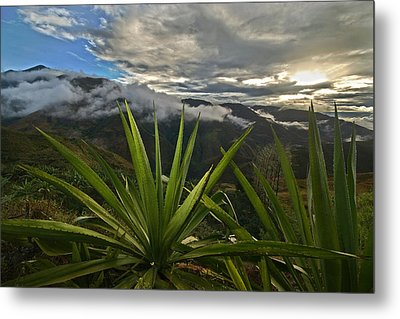 Landscape Of Southern Colombia. Department Of Narino. Metal Print by Eric Bauer