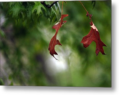 Metal Print featuring the photograph Last To Fall by Wanda Brandon