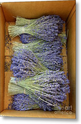 Metal Print featuring the photograph Lavender Bundles by Lainie Wrightson