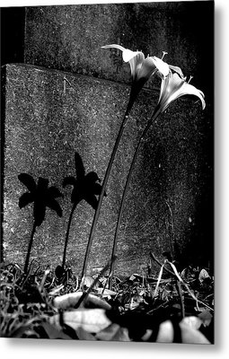 Life And Death Metal Print