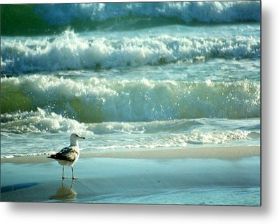 Metal Print featuring the photograph Life Is A Beach........ by Tanya Tanski