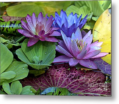 Metal Print featuring the photograph Lilies No. 27 by Anne Klar