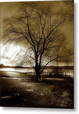 Lonely Willow Metal Print