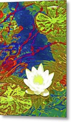 Lotus Metal Print by James Mancini Heath
