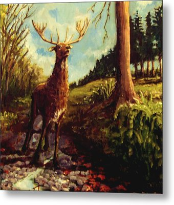 Lowland Stag Metal Print by Graham Keith