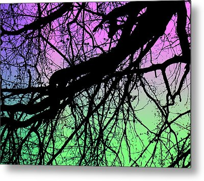 Metal Print featuring the photograph Lunar Silhouette by Amy Sorrell