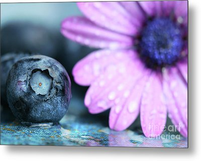 Macro Shot Of A Blueberry Metal Print by Sandra Cunningham
