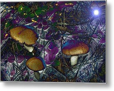 Magic Mushrooms Metal Print by Barbara S Nickerson