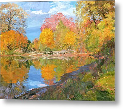 Mayslake At Fall Metal Print by Judith Barath