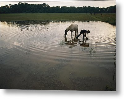 Mennonite Farm Child With Horse Metal Print by Randy Olson