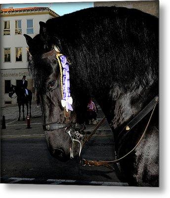 Metal Print featuring the photograph Menorca Horse 2 by Pedro Cardona
