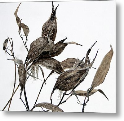 Metal Print featuring the mixed media Milkweed In Winter by Bruce Ritchie