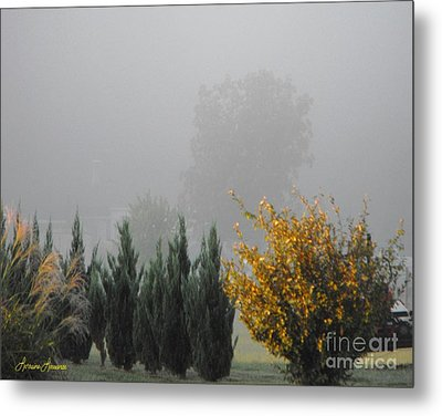 Misty Fall Day Metal Print by Lorraine Louwerse