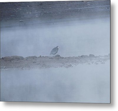 Misty Morning At Norris Lake Metal Print