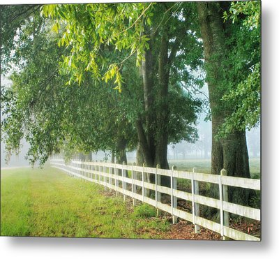 Morning Light Hdr - 2 Metal Print by Mary Hershberger