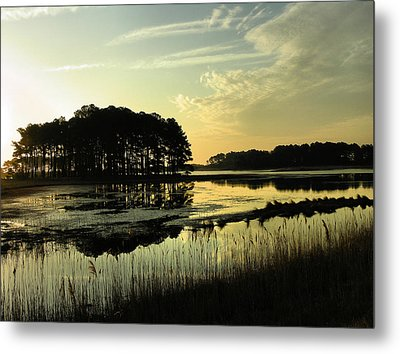 Morning On Assateague Island Metal Print by Steven Ainsworth