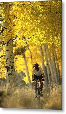 Mountain Biking Through A Grove Metal Print by Bill Hatcher