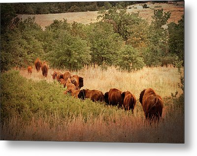 Moving On Metal Print by Tamyra Ayles