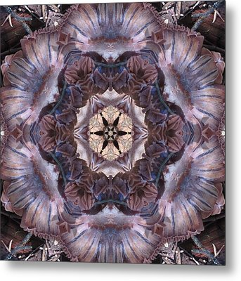 Mushroom With Star Center Metal Print
