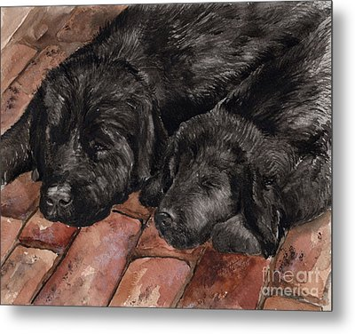 Metal Print featuring the painting Nap Time by Nancy Patterson