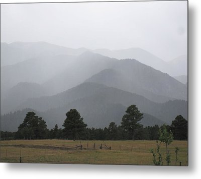Nature Is Simple-why Can't We Be Metal Print by Tammy Sutherland