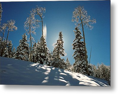 New Fallen Snow Metal Print