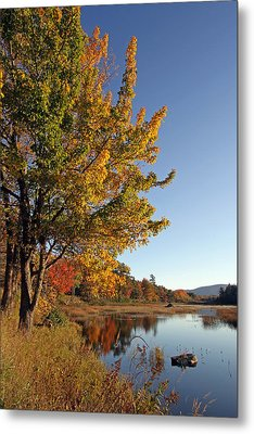 New Mills Meadow Pond Metal Print