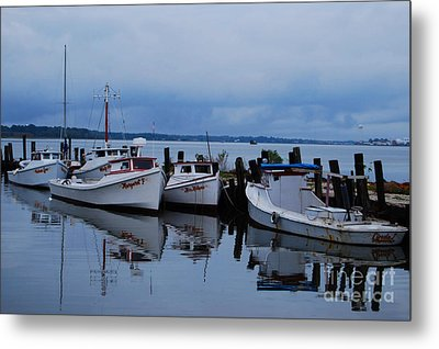 Metal Print featuring the photograph Not Today by Linda Mesibov