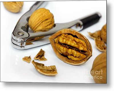Nut Cracker Metal Print