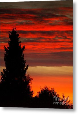 October Sky 4 Metal Print by Michael Canning