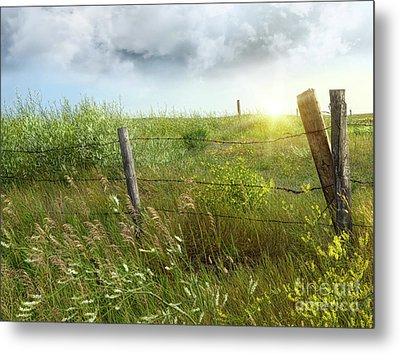 Old Country Fence On The Prairies Metal Print