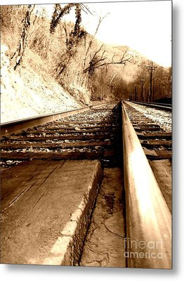 Metal Print featuring the photograph On The Rail by Amy Sorrell