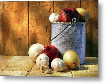 Onion Harvest Metal Print by Sandra Cunningham