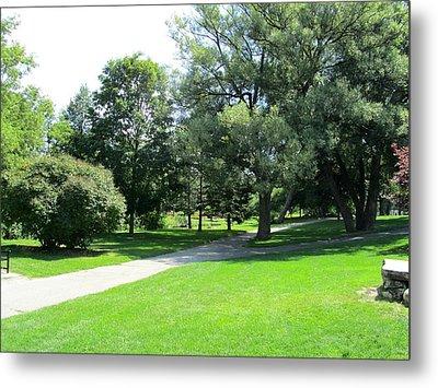 Oshawa Botanical Garden 2 Metal Print by Sharon E Steinhaus