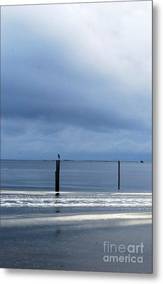 Metal Print featuring the photograph Out And About by Linda Mesibov